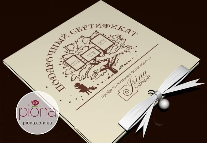 Дизайн логотипа и фирменного стиля фотографа Ирины Вапняр. Дизайн от интел брэндинг бюро Пиона
