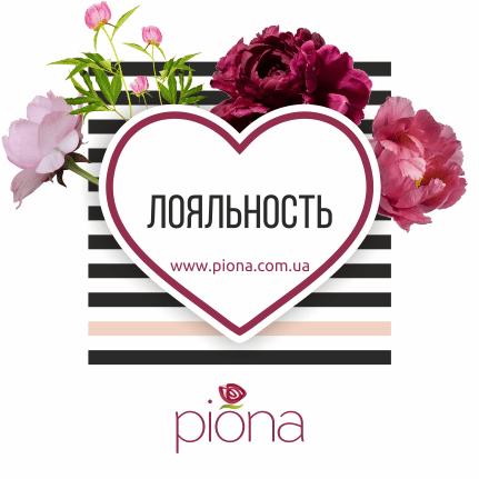 Пакет «Лояльность» от брэндинг бюро Пиона